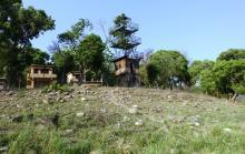 10 Dhikala Watch Tower